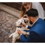 Vestuviu-fotografijos-205